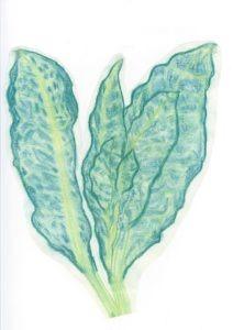 Healing leaf spirit
